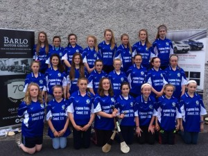 U14 St Brigid's panel Feile
